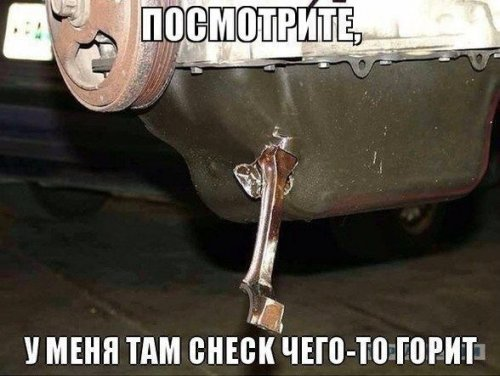 авто приколы